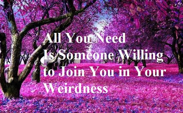 fairy Weird quote